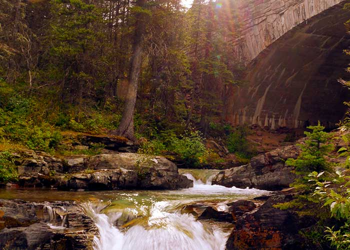 A beautiful image of a babbling brook in Waterton