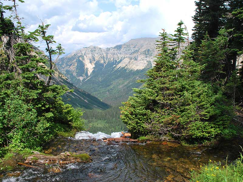 A photo of a stream over looking Waterton Valley